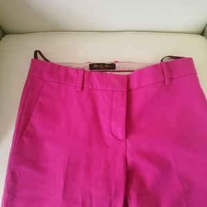 🌻 Loro Piana Pants in Gorgeous Pink